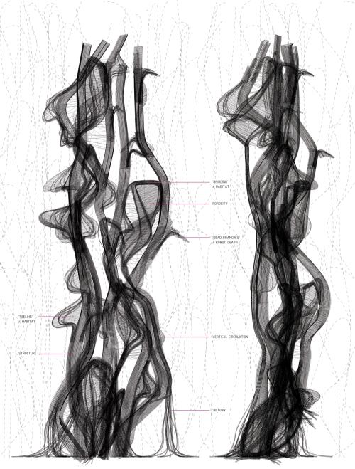 panel-5-trajectory_1