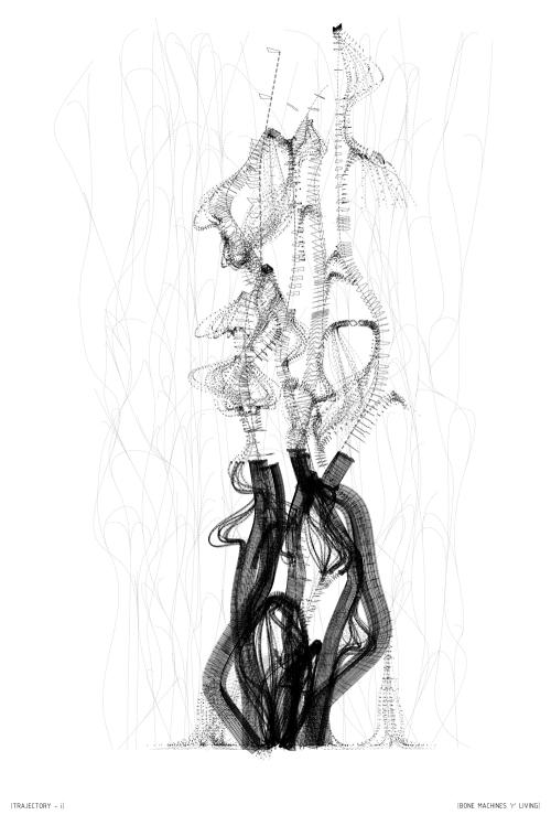 bone_trajectory_i